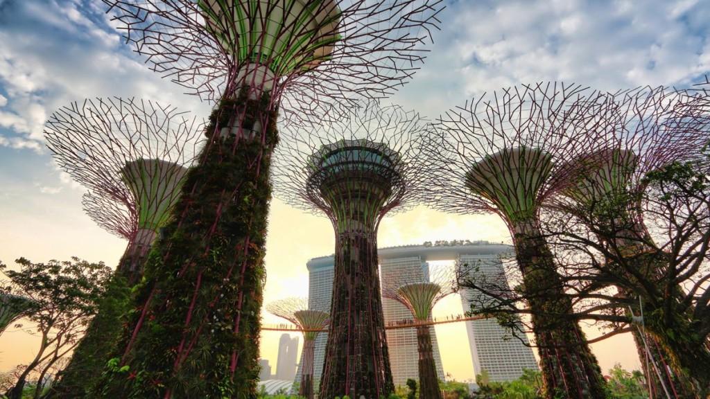 supertrees-singapore